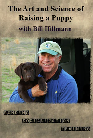 The Art and Science of Raising a Puppy DVD with Bill Hillmann