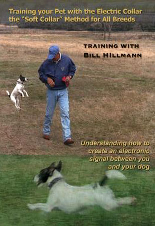 Training your Pet with the Electric Collar with Bill Hilmann